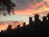 sunset-at-harvard