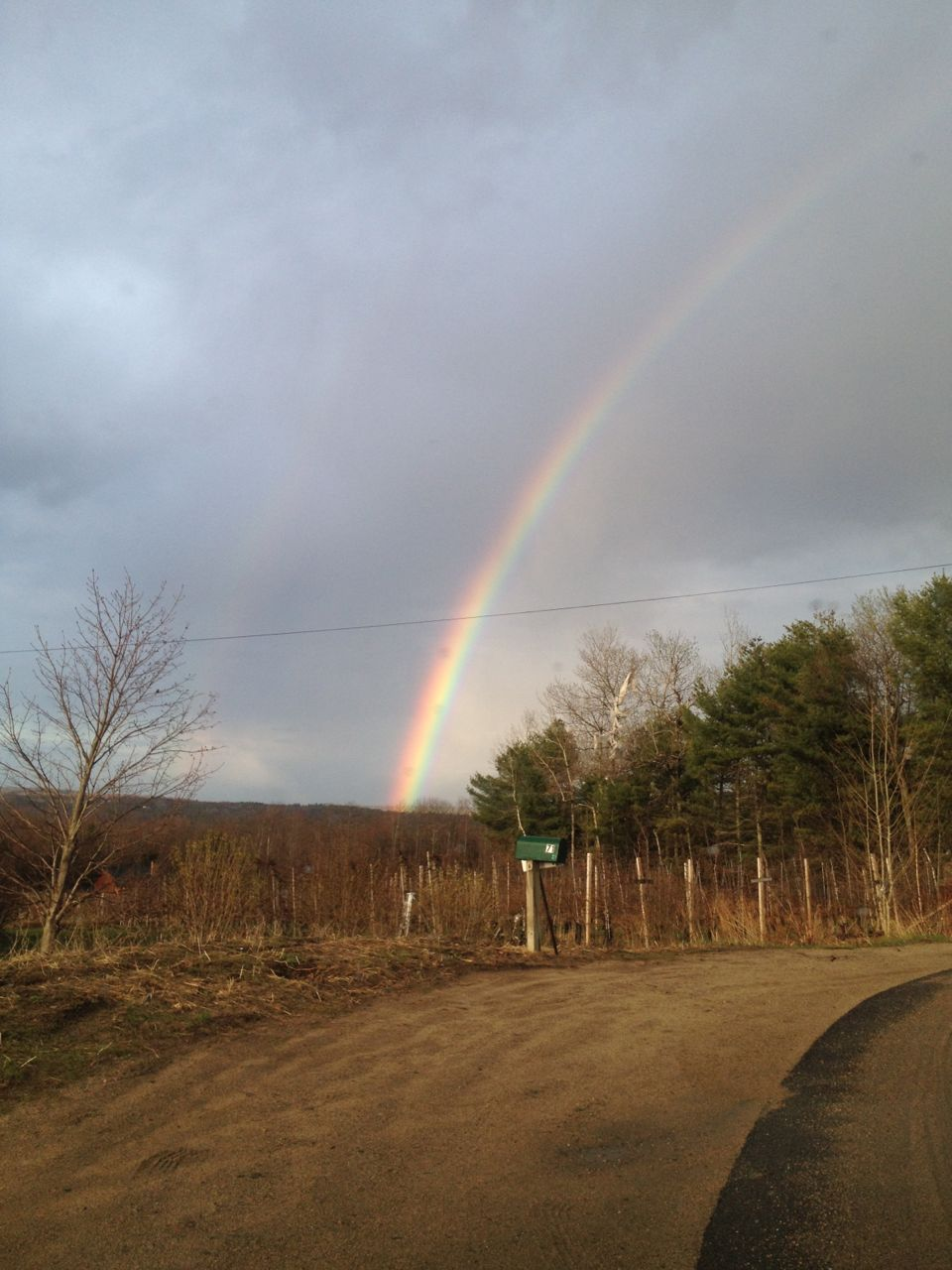 Maine Rainbow